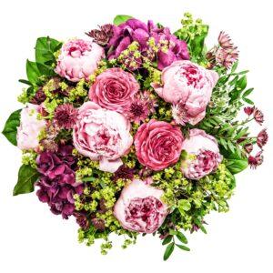 Lyserøde og pinkfarvede roser